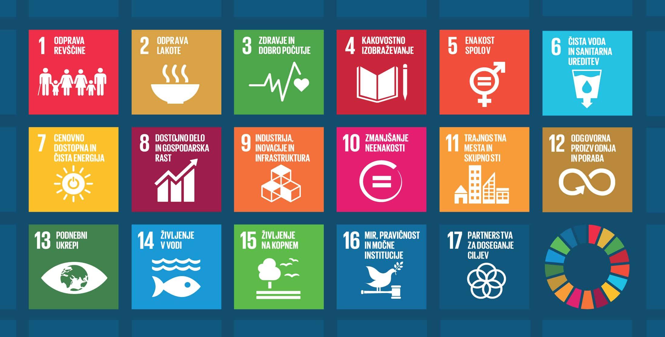 Usposabljanje o komuniciranju in vključevanju ciljev trajnostnega razvoja znotraj organizacij
