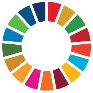 Spletno usposabljanje o krepitvi pluralnosti v globalnem učenju
