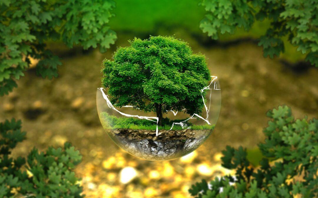 Varovanje narave. Foto: Pixabay