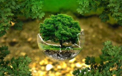 Nova publikacija: Globalno učenje in podnebne spremembe
